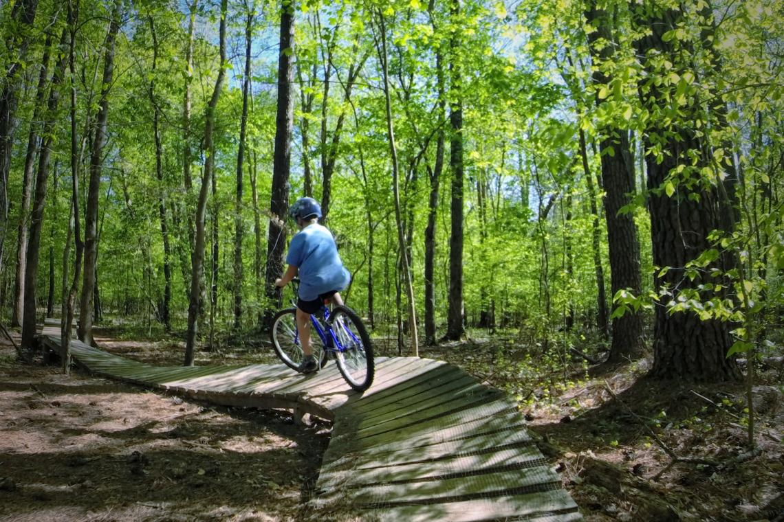 bicycle in forest route