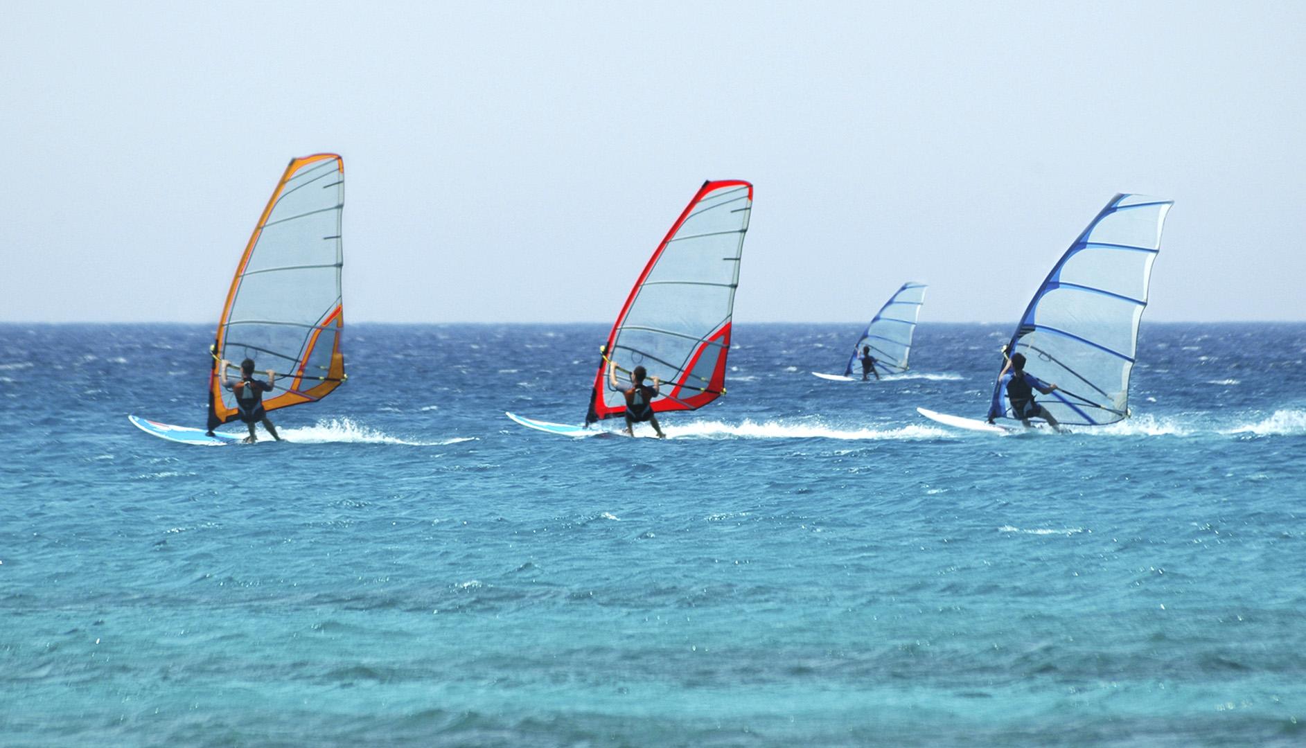 windsurfers in sea